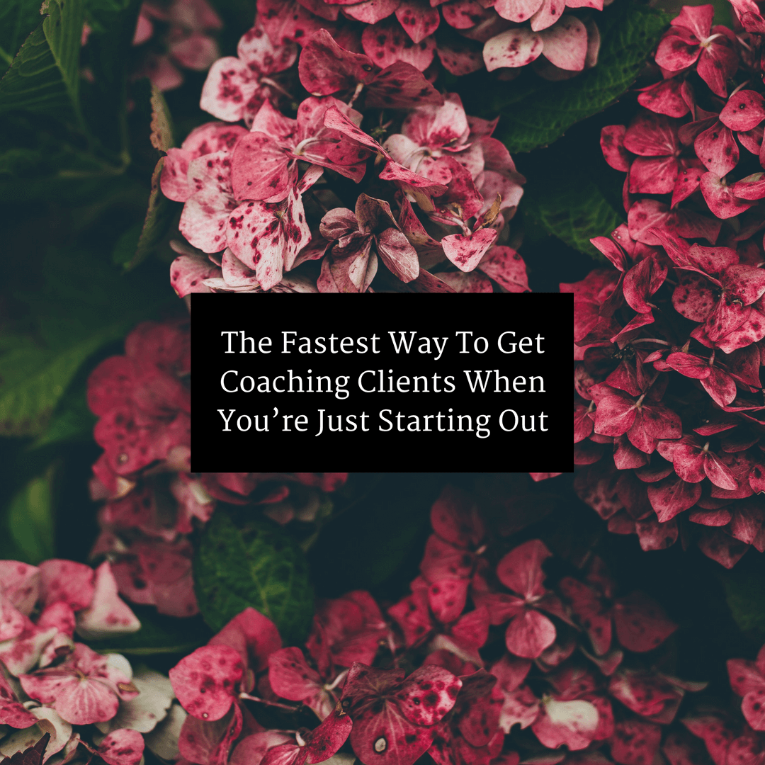 The Fastest Way To Get Coaching Clients When You're Just Starting Out