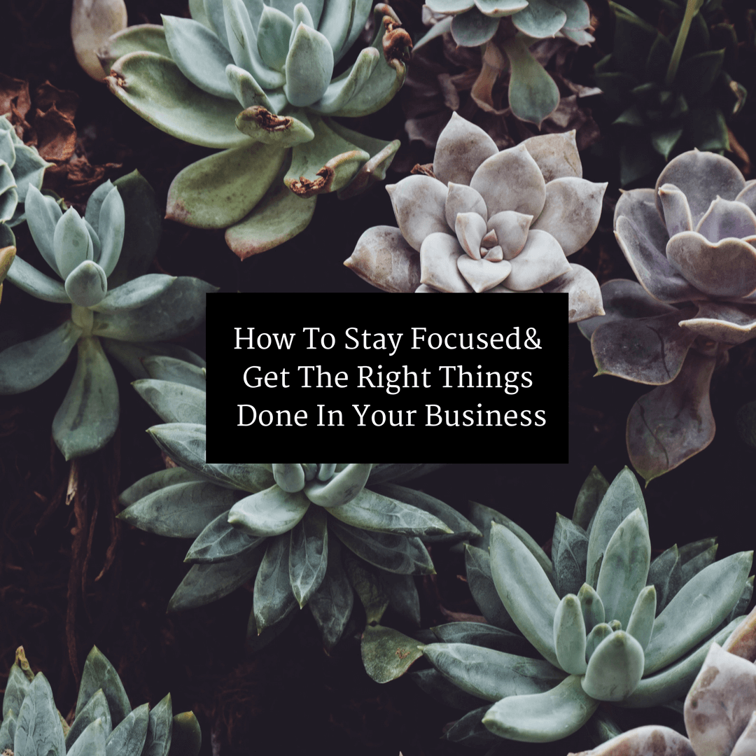 How To Stay Focused & Get The Right Things Done In Your Business
